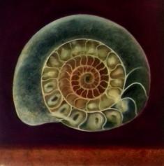 'Ammonite III'. SOLD