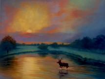'Sunset, Richmond Park' 2021