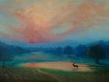 'First Light' Richmond Park'