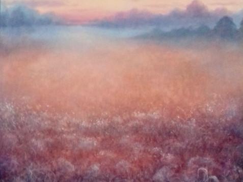 'Field of Dreams'