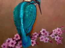 Kingfisher & Cherry Blossoms.jpg