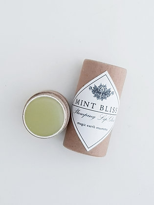 Mint Bliss Lip Gloss
