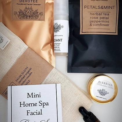 Mini Home Spa Facial