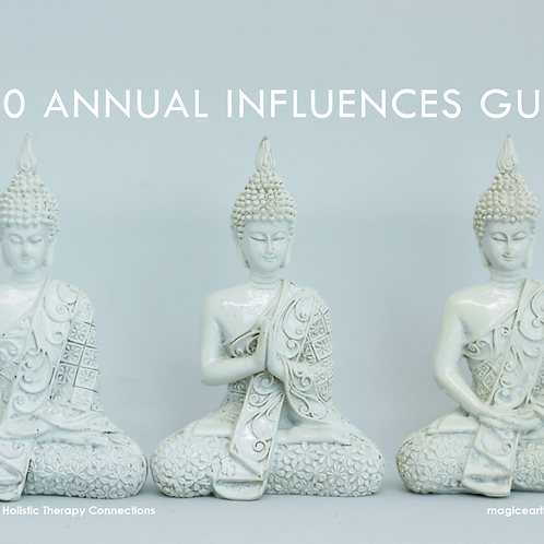 2020 Annual Influences Guide