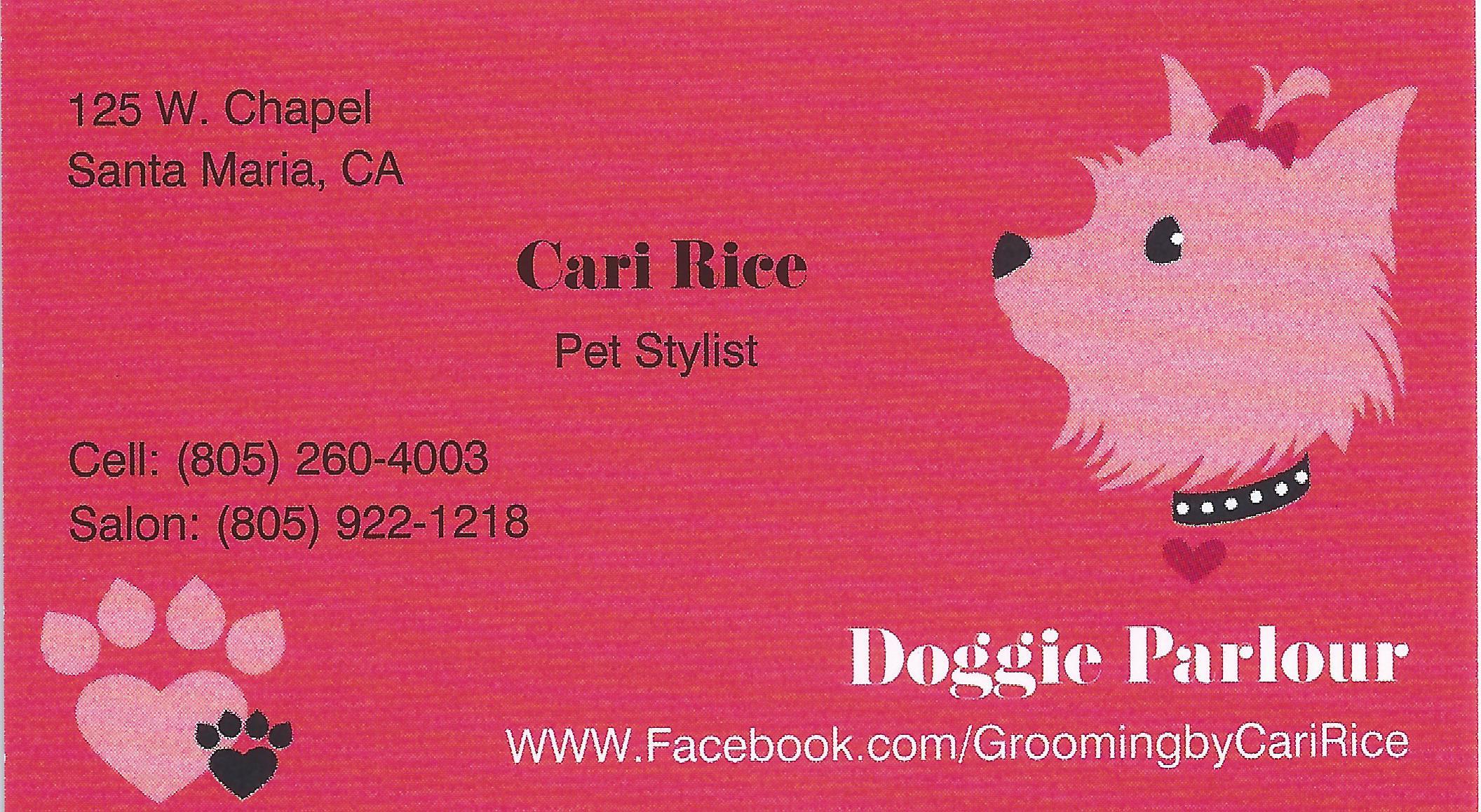 Cari Rice - Pet Stylist