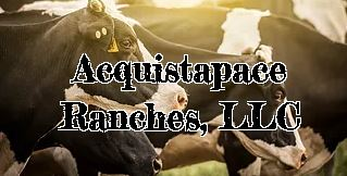 Acquistpace Ranches