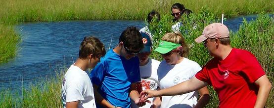marine-camp-wetland-marsh-ecology.PNG