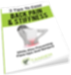 3 tips to ease back pain and stifness - free report