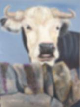 cow_edited.jpg