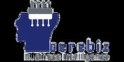 Cerebiz Logo Original.png