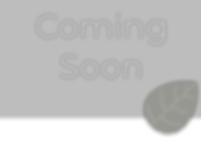 Coming Soon 2-2.png