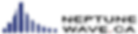 NEP Logo Transparent Back April 2019.png