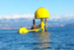 Neptune WAVE ENERGY 2 Float Test Unit NE