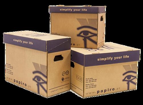 Papiro_Site_Logotipo_PapiroExpresso_Imag