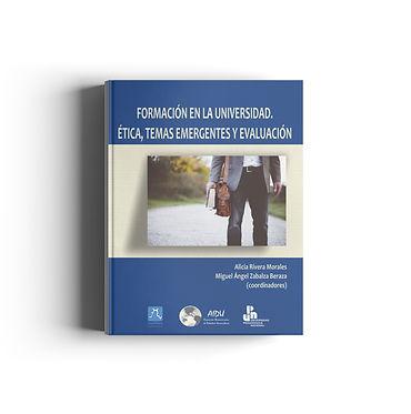 FORMACION DE LA UNIVERSIDAD.jpg