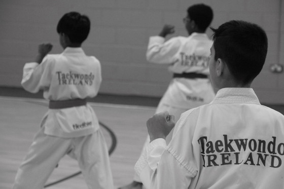 2019 Black Belt Preliminaries