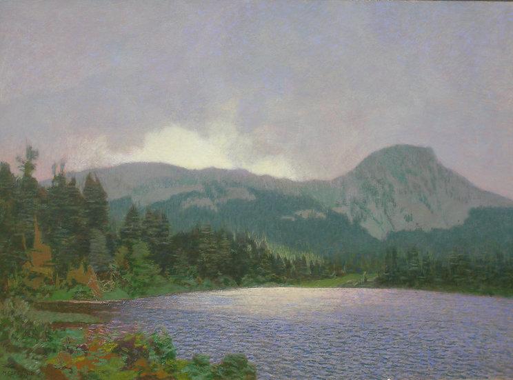Michael Ferguson Acrylic Painting Park Lake