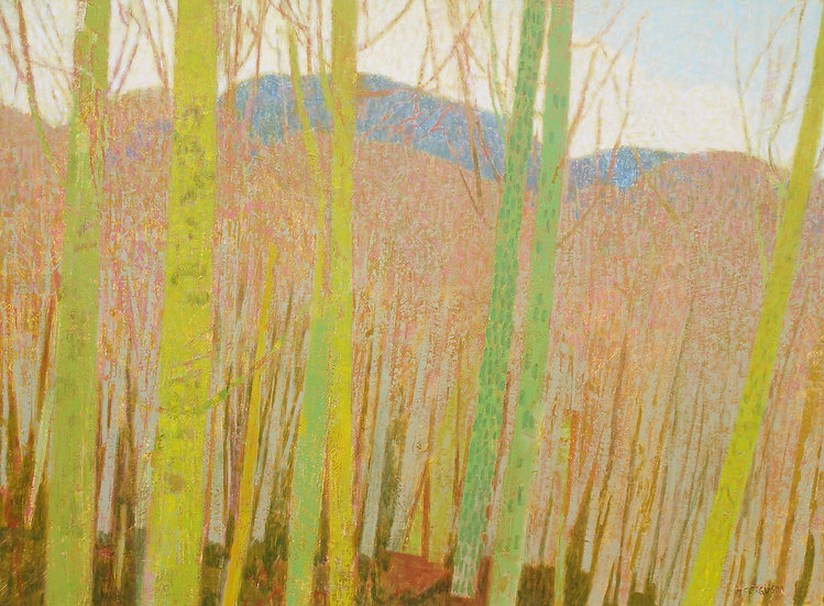 Michael Ferguson Acrylic Painting To Green Mountain