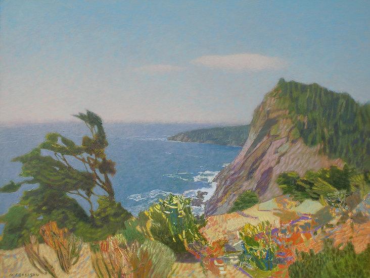 Michael Ferguson Acrylic Painting Southern Cliffs