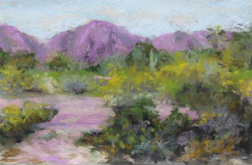 pastel Dona Bostrom Lewinger sonoran pink