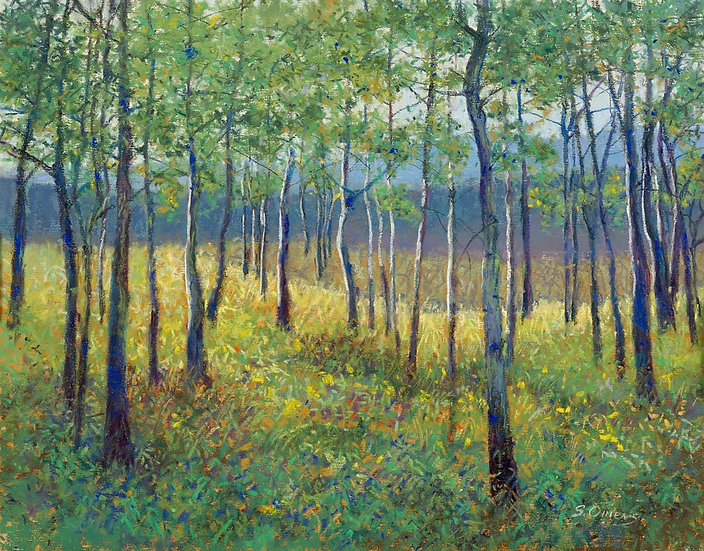 Pastel Suzanne Owens The Whisper of the aspens