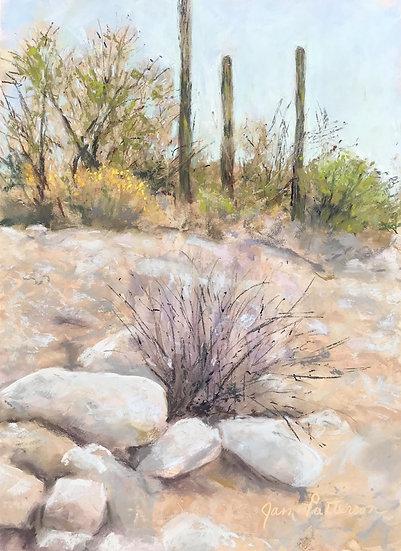 pastel janet patterson cacti trio