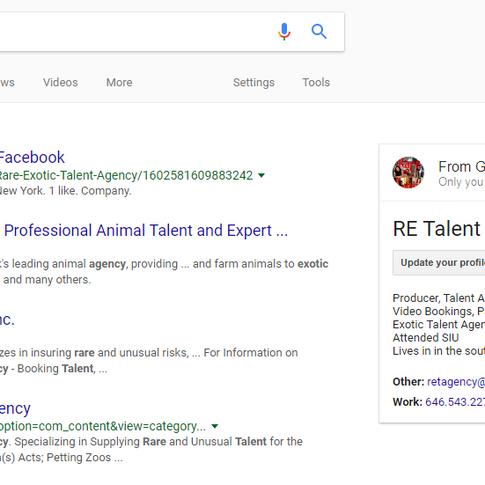 Google Rare Exotic Talent Agency
