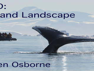 Exciting Fundraiser with BBC Wildlife Photographer Ben Osborne (18/03)