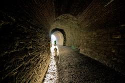 Central Otago Rail Trail Tunnel