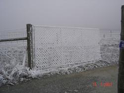 Hoar Frost during Alexandra Winter