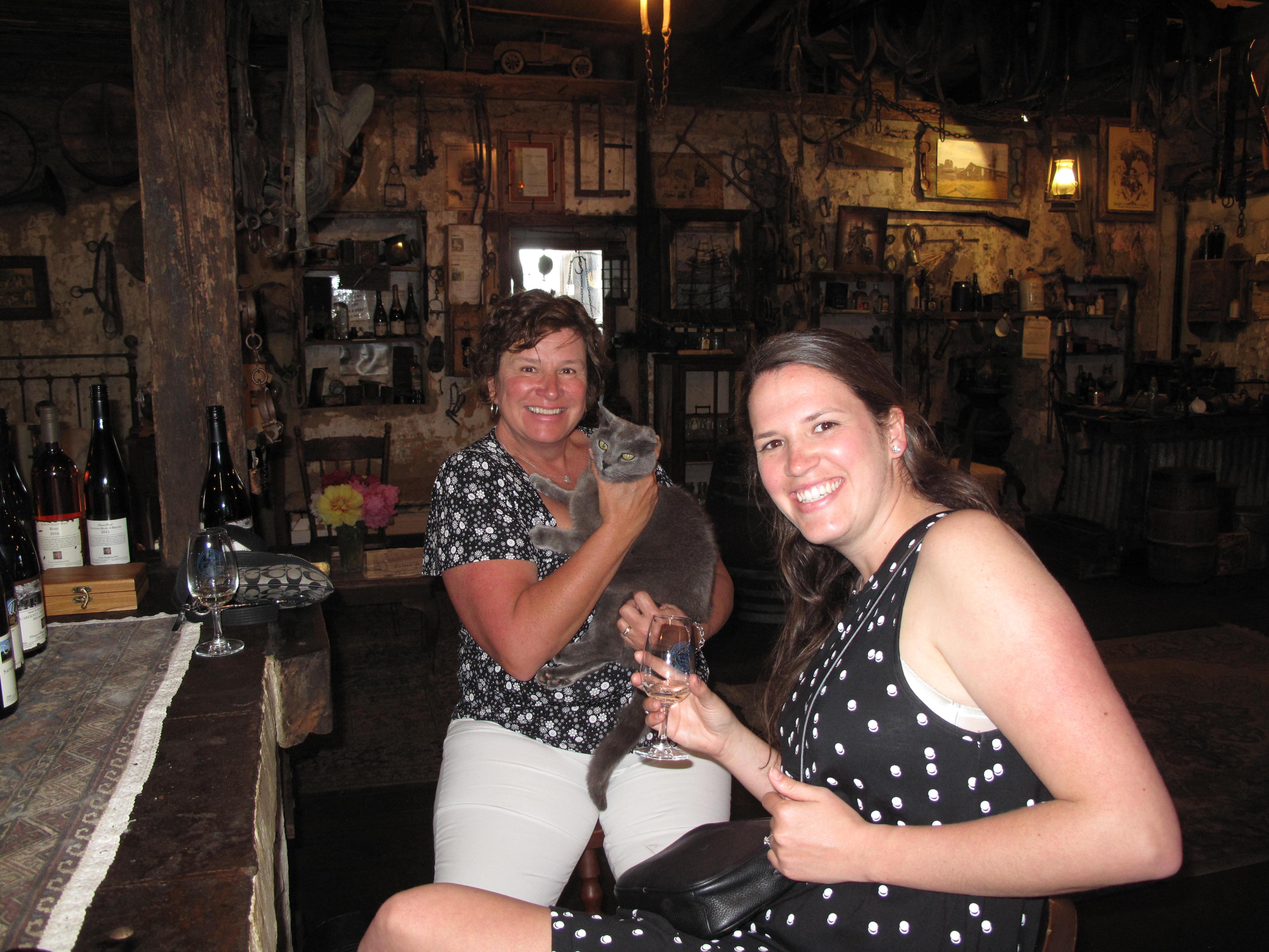 Vine 2 Wine customers at Coma Villa
