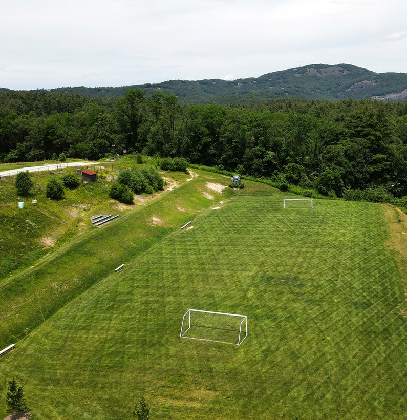 Activity Field