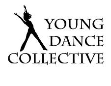 YDC logo (1).png