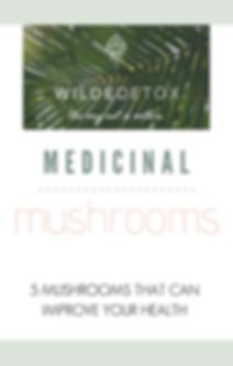Medicinal Mushroom Ebook.png