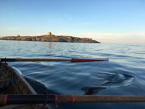 Dalkey Island Oar.jpg