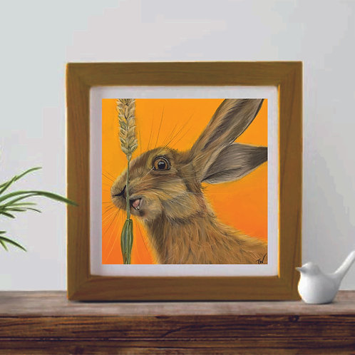 'Hugo Hare' Limited Edition Giclée Print