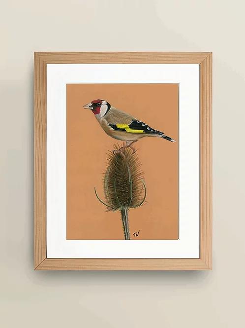 A4 'Goldfinch' Giclée Print