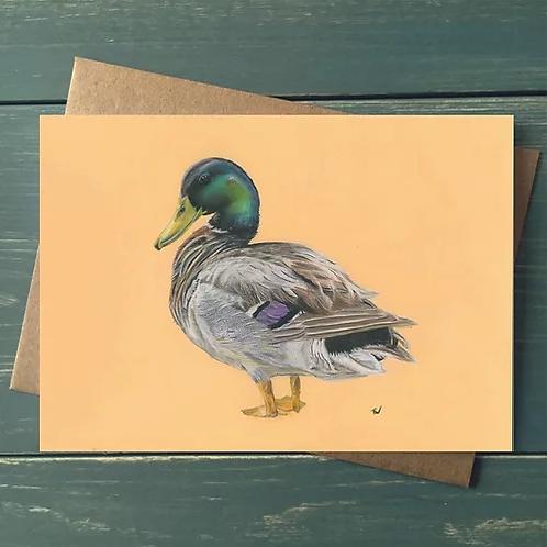 'Quack' A6 Greetings Card