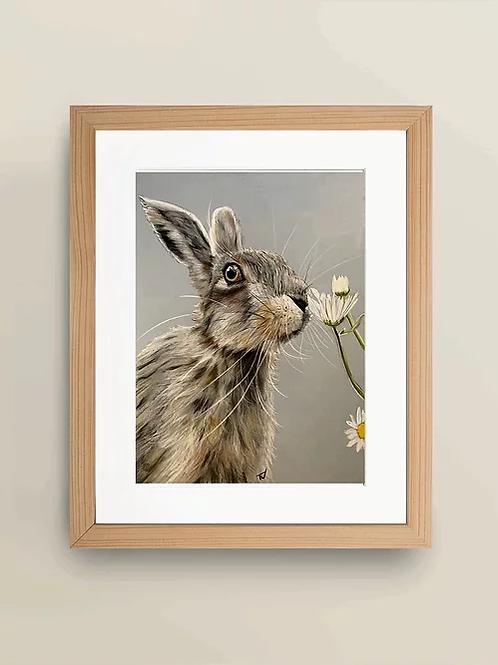 A4 'Ooops a daisy' Giclée Print