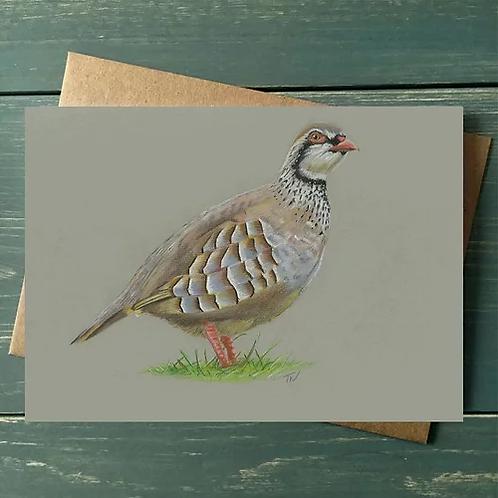 'Partridge' A6 Greetings Card