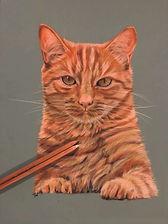 cat tracey walder.jpg