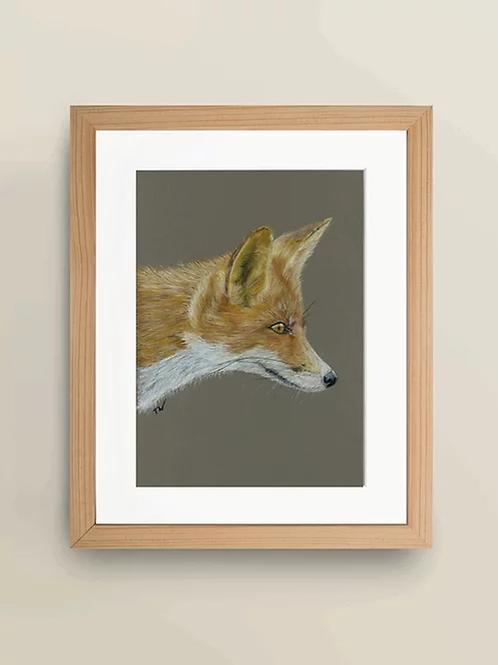 A4 'Sly Fox' Giclée Print
