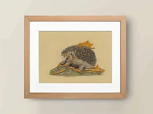 A4 'Hedgehog' Giclée Print
