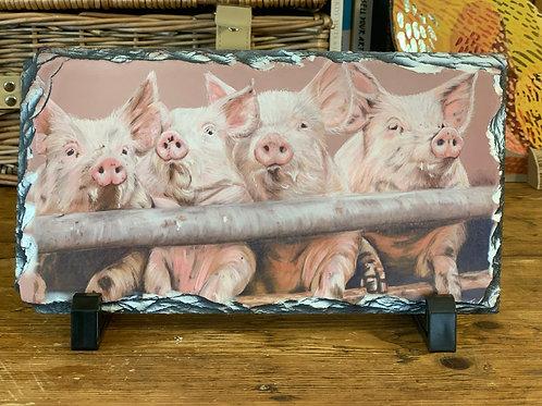 'Pink Piggies' Decorative Display Slate