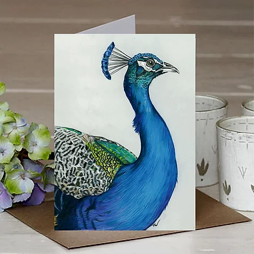 'Peacock' A6 Greetings Card