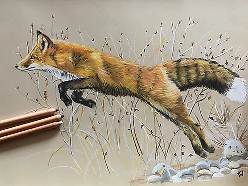 The Leaping Fox