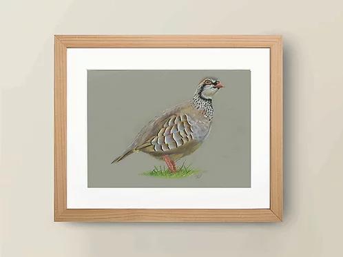 A4 'Partridge' Giclée Print
