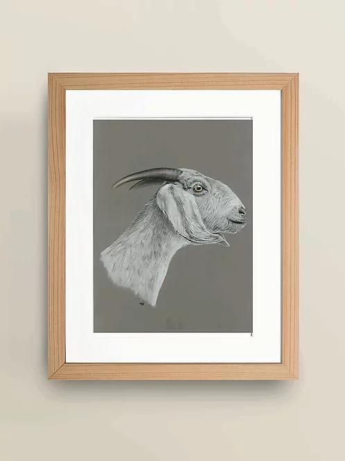 A4 'The Goat' Giclée Print