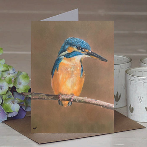A6 'The waiting Kingfisher' Greetings Card