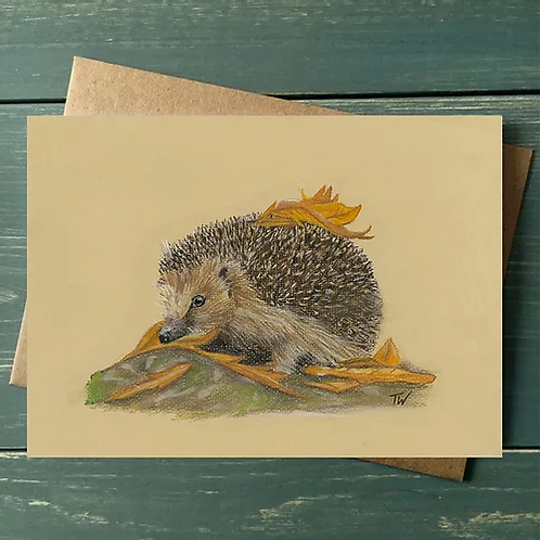 'Hedgehog' A6 Greetings Card